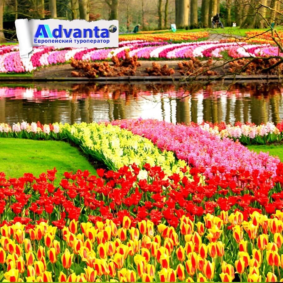 Кекенхоф - парк цветов (авиа)