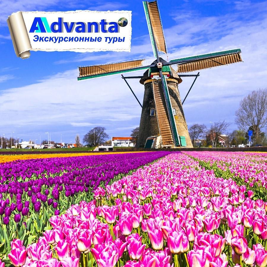 Парк цветов Кёкенхоф + Бельгия-Голландия. Вылет из СПб.