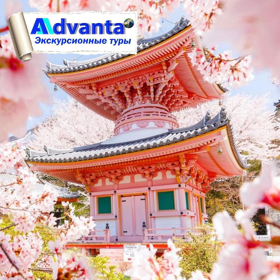 Экскурсионная Япония